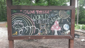 World Turtle Day Celebration at Barfield Park