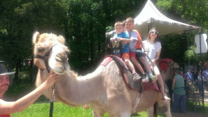 Never rode a horse, so I rode a camel instead.