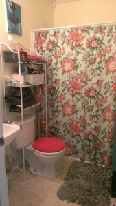 Our lovely bathroom dressed in a new shower curtain, rug, and fresh gray and red towels.
